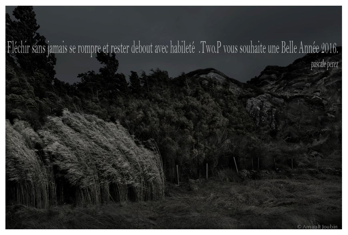 ©Arnault Joubin - TWO.P